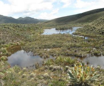 Turmequé - Laguna de El Valle